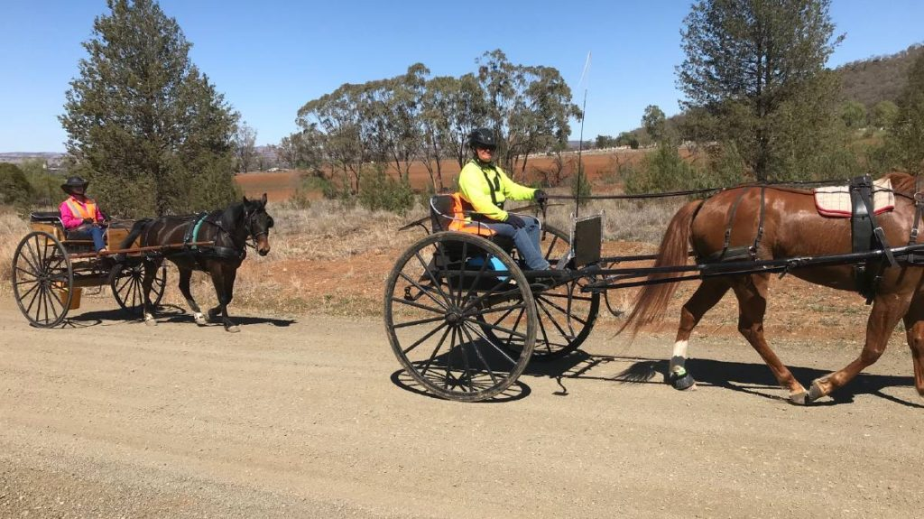 Liverpool Plains Harness Club charity drive