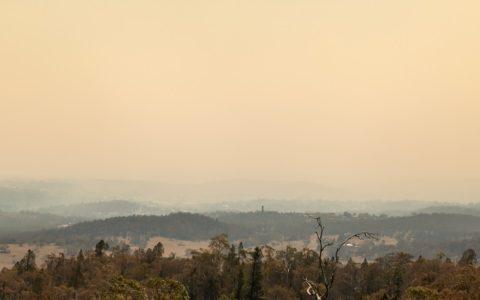 Bushfire program update